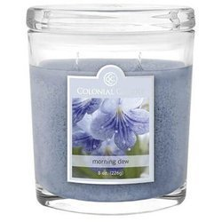 Colonial Candle medium scented oval jar candle 8 oz 226 g - Morning Dew