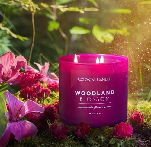 Colonial Candle Pop Of Color sojowa świeca zapachowa w szkle 3 knoty 14.5 oz 411 g - Woodland Blossom