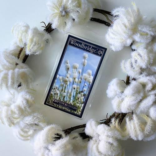 Woodbridge wosk zapachowy kostki 68 g - Cotton Blossom